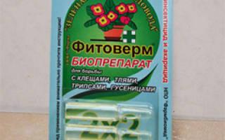 Как развести фитоверм для комнатных растений
