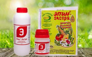 Эпин стимулятор роста растений применение