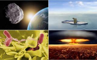 Мыши потенциальная угроза жизни и существованию человека