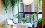 Какими бывают комнатные вьющиеся растения
