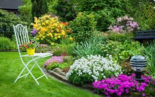 Образцы клумб или цветников для дачи