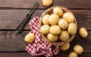 Картошка картошке рознь