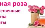 Лепестки чайной розы применение рецепты