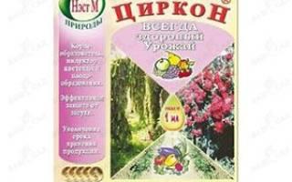 Циркон для полива комнатных растений