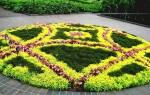 Виды клумб и цветников