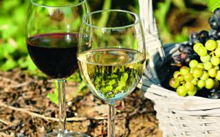 Морозостойкие винные сорта винограда