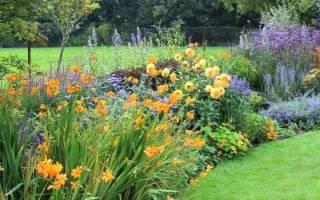 Высадка цветов на клумбы